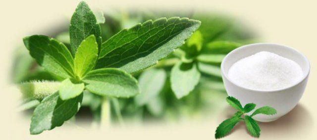 Stevia: um açúcar mais saudável