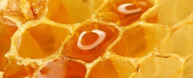 Variedades de mel natural