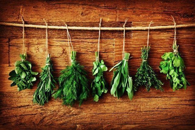 Como usar ervas para temperar refeições
