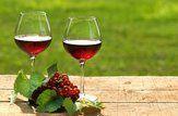 Saiba como escolher um vinho bom e barato