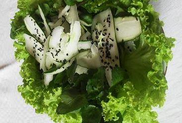 Salada com pepino Japonês