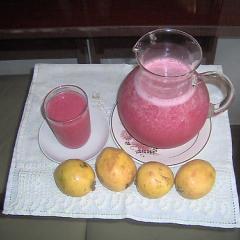 Suco de Goiaba Diet