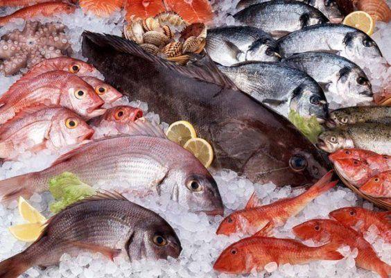Como comprar um peixe com segurança