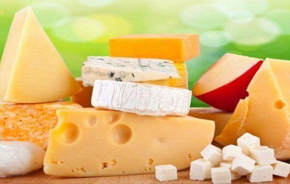 Benefícios do consumo de queijos