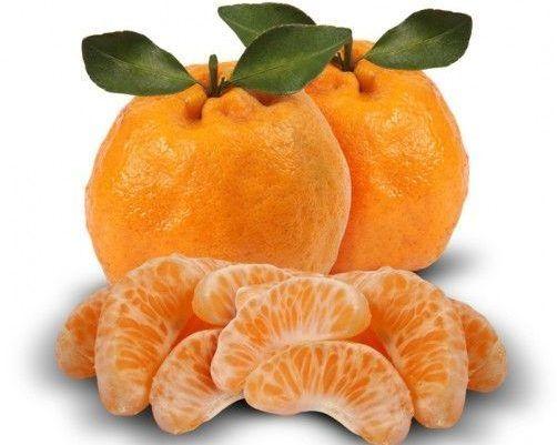 Funcionalidades da tangerina: conheça e aproveite