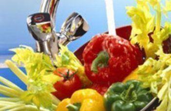 Higienização dos vegetais e folhosos: uma alimentação livre de impurezas