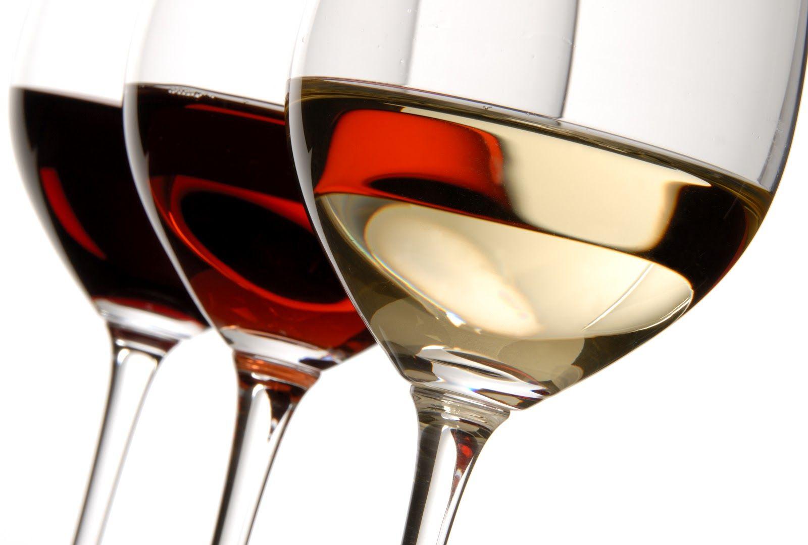 Guia de vinhos para iniciantes 1